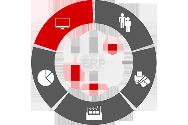 ERP functionality